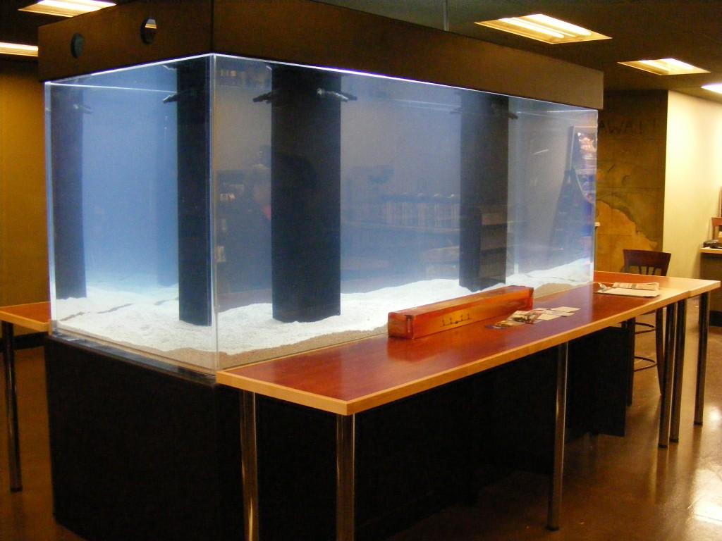 1200 gallon custom aquarium system for cafe centerpiece by Indoor Oceans