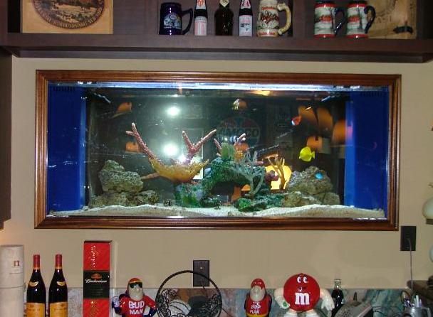 View two of 125 gallon built in custom aquarium