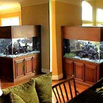 Beautiful 230 gallon saltwater reef tank with custom cherry stand by Indoor Oceans