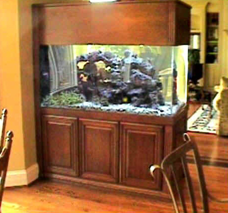 Gorgeous 230 Gallon Custom Aquarium with Cherry Stand by Indoor Oceans