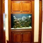 300 gallon built-in by Indoor Oceans