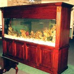 300 gallon aquarium with custom mahogany stand by Indoor Oceans