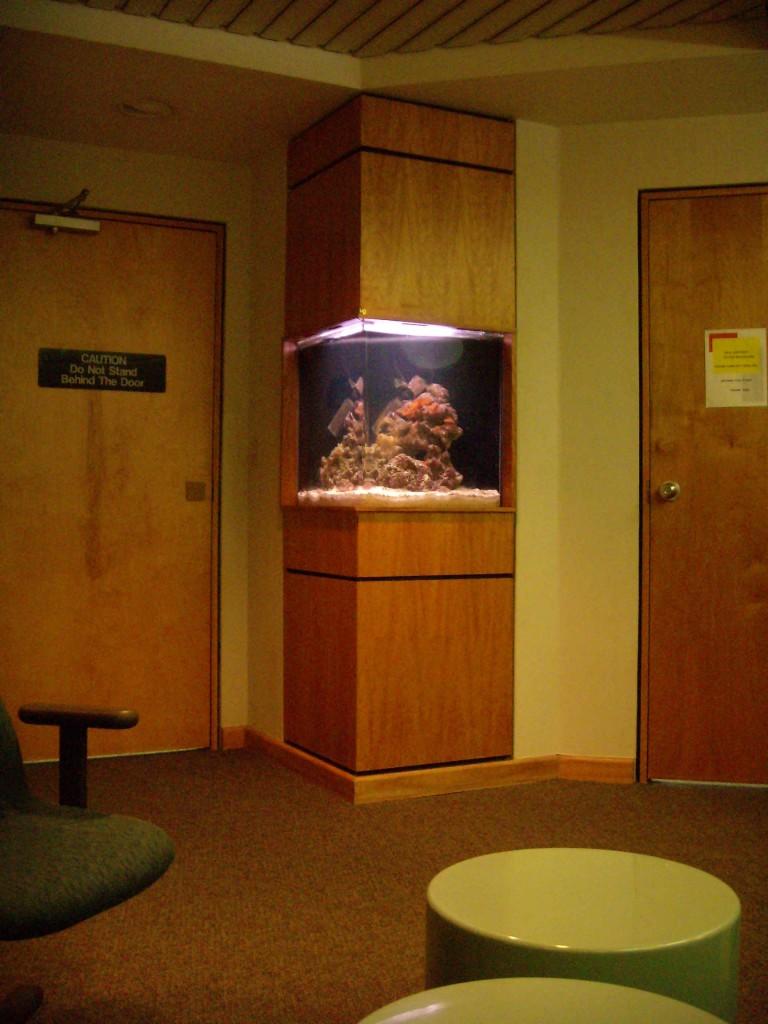 50 gallon custom built in aquarium in physician office by Indoor Oceans