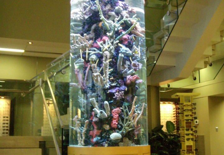 Stunning 600 gallon custom cylinder aquarium by Indoor Oceans