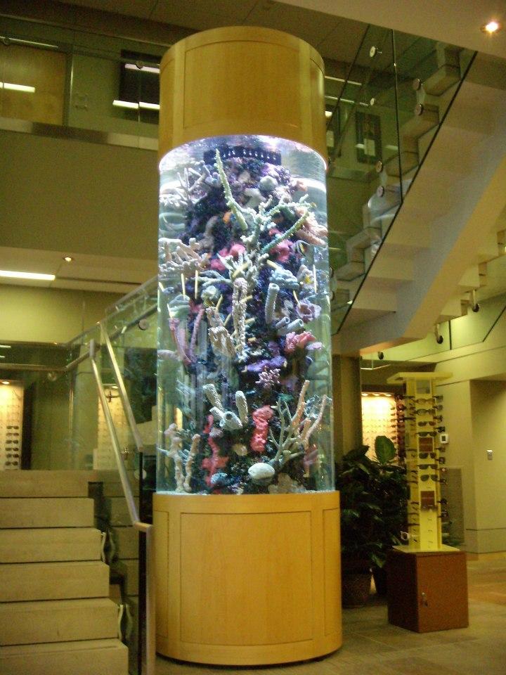 Stunning 600 gallon custom cylinder aquarium by Indoor Oceans