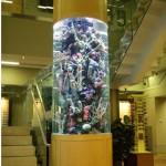 Magnificent artificial reef insert in custom cylinder tank by Indoor Oceans