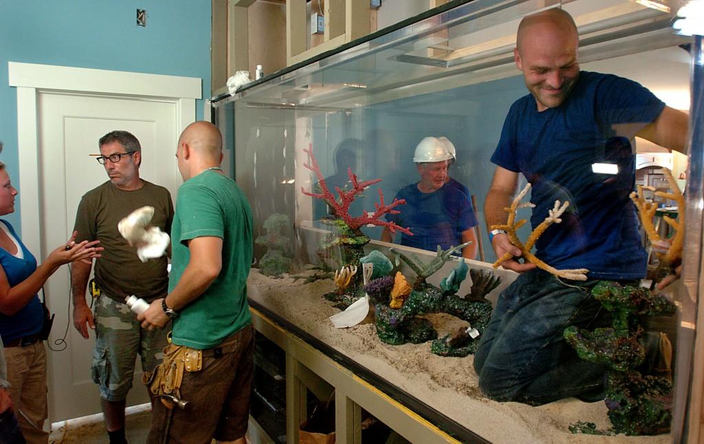 Indoor Oceans Extreme Makeover Installation Progress Artificial Coral Insert