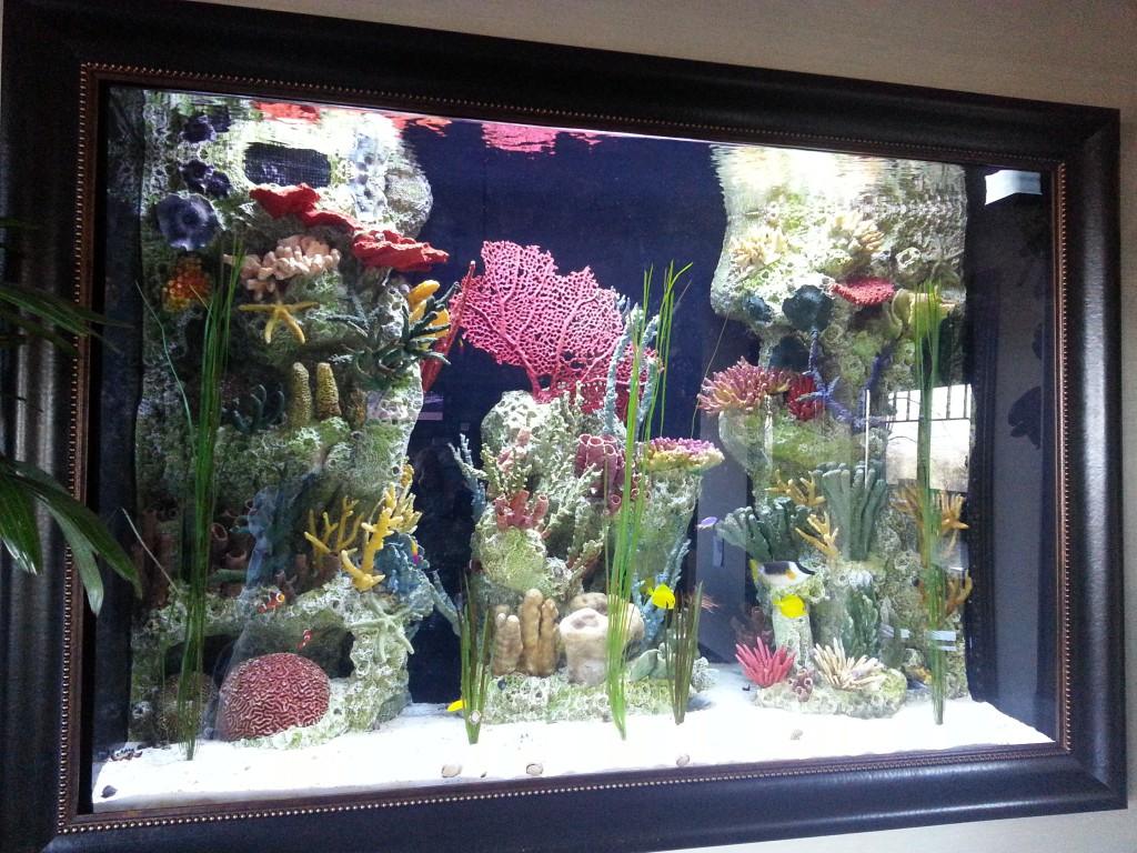Amazing custom saltwater aquarium for office lobby