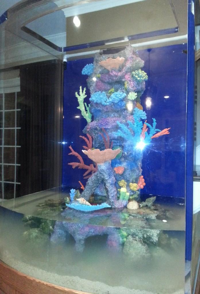 artificial coral reef insert indoor oceans