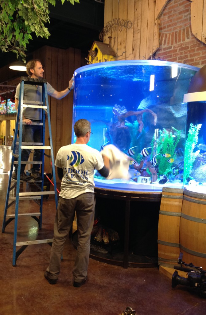 Steve Temple, Area Owner Indoor Oceans Knoxville, and David Burch (on ladder), Area Owner of Indoor Oceans Nashville, clean the outside of the newly installed aquarium by Acrylic Tank Manufacturing